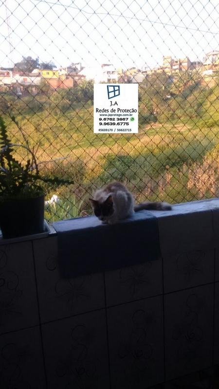 Telas de Proteção em Janelas para Gatos Santa Isabel - Tela para Proteção de Gatos