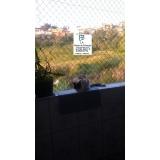 redes de proteção de gato Vila Endres