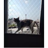 telas de proteção para gatos Jardim América