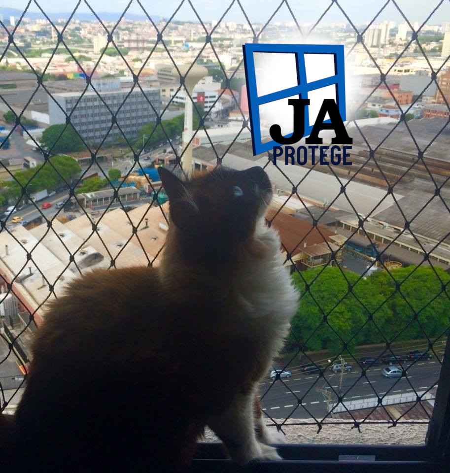 Redes e telas de Proteção Para gatos